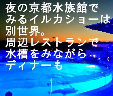 夜の京都水族館