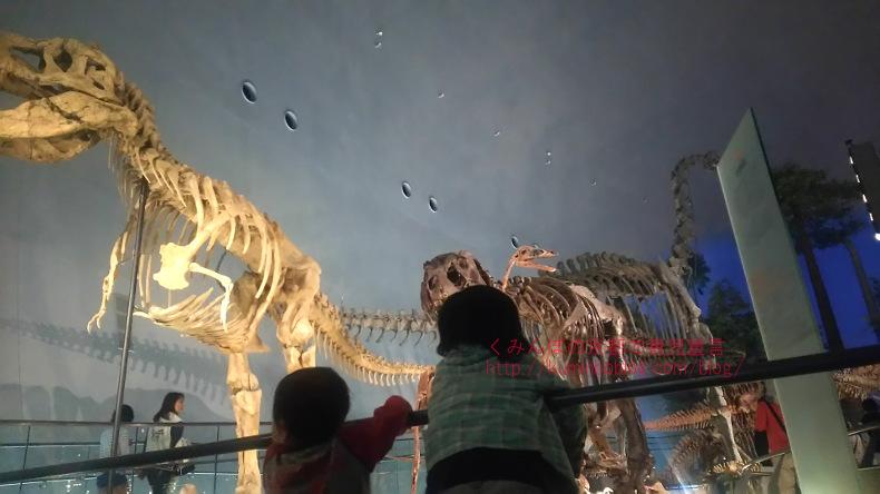 福井 恐竜博物館と、かつやまディノパークへ行ってきたから口コミ。京都から車で3時間のアクセス。