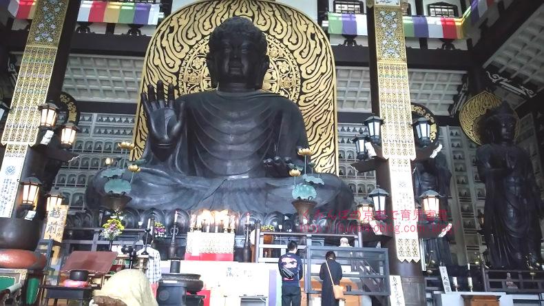 福井 越前大仏は巨大でスケールが大きすぎて圧巻。子連れで参拝しても楽しめる