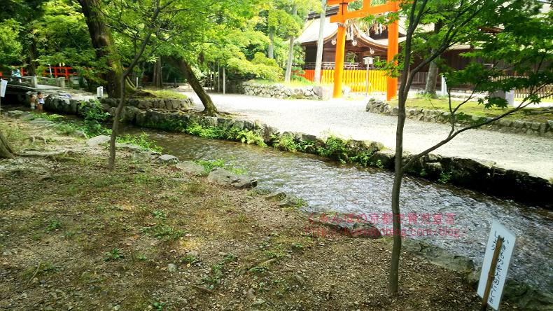 上賀茂神社小川